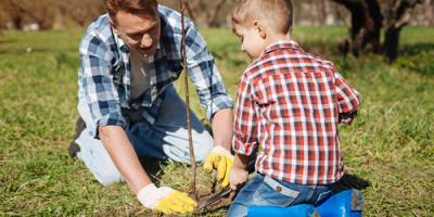 Get Ready for Spring! Lawn Maintenance Experts Explain 3 Steps for Proper Preparation, Elko, Nevada