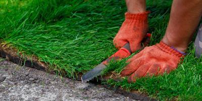The Best Gloves for Home Improvement & Yard Work, Cincinnati, Ohio