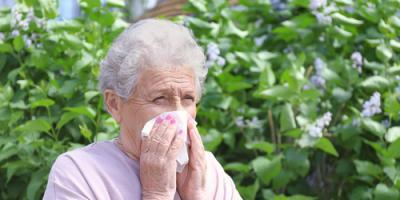 Top 3 Seasonal Allergy Tips for Seniors, Frankfort, Ohio