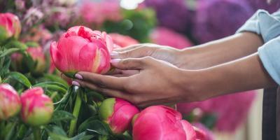 Why Are Peonies Such Popular Flowers?, Hastings, Nebraska