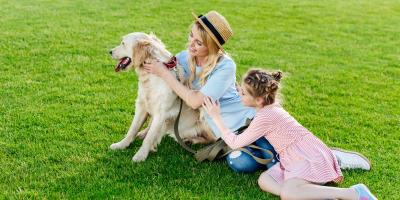 4 Tips to Prepare Your Lawn for Springtime, St. Peters, Missouri