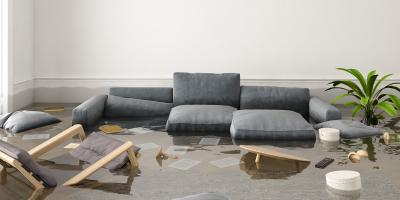 Flooded Home? Why You Should Leave Disaster Cleanup to the Professionals, Shenandoah, West Virginia