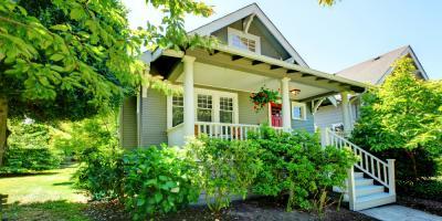5 Summer Tree Care Tips to Keep Your Yard Vibrant, North Huntingdon, Pennsylvania
