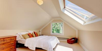 A Guide to Mold Growth in Your Home's Attic, La Crosse, Wisconsin