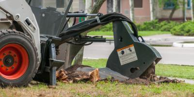 3 Reasons to Have Stump Grinding, Kalispell, Montana