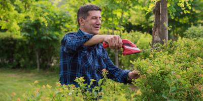 3 Items to Look for When Hiring a Landscaping Contractor, Danley, Arkansas