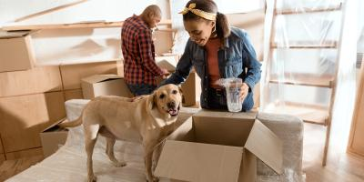 How Long Do Dogs & Cats Live?, Springfield, Ohio