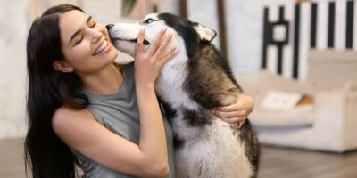 How to Help Your Pet Cope With Loss, Koolaupoko, Hawaii