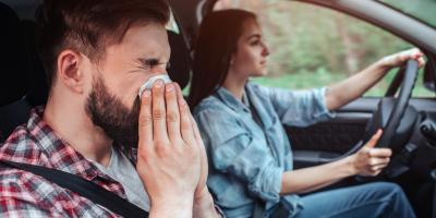 How to Protect Your Auto Glass From Spring Pollen , West Kittanning, Pennsylvania