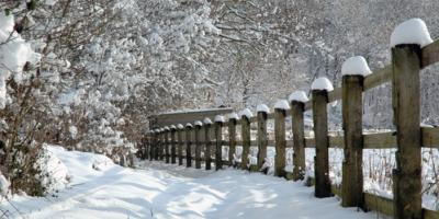 Fence Contractors Explain How to Prepare for Winter, Deep River, North Carolina