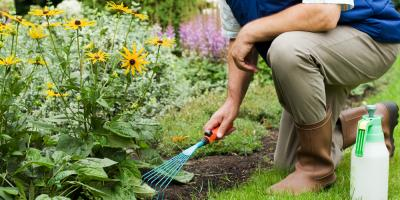Landscaping Supplies Shop Shares Guide for Spring & Summer Lawn Care, Lexington-Fayette, Kentucky