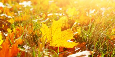 The Do's & Don'ts of Preparing Your Lawn for Winter, Fairbanks North Star, Alaska
