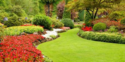 3 Benefits of Professional Lawn Care, Saratoga, Wisconsin