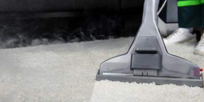 3 Pests That Can Damage Your Carpet, Anchorage, Alaska
