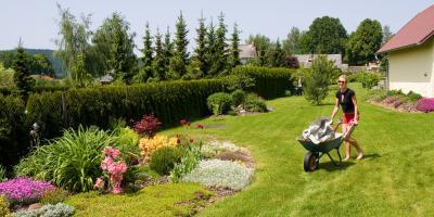 4 Gardening Supplies Every Beginner Must Have, Hamilton, Ohio
