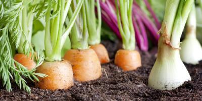A Fairfield Garden Store Offers Unbelievable February Fertilizer Deals, Fairfield, Ohio