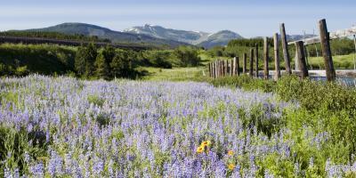 Perks of Living in Kalispell, Montana, Kalispell, Montana