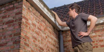 What to Do If Your Roof Has Mold, O'Fallon, Missouri
