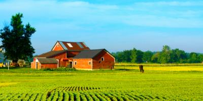 How Propane-Powered Farms Are Changing the Agriculture Industry, New Braunfels, Texas