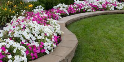 Learn How to Harmonize Your Garden's Hardscaping & Softscaping, Snellville-Grayson, Georgia