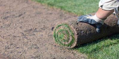 Provide the Care Your New Sod Lawn Deserves With These 4 Tips, Brunswick, Ohio
