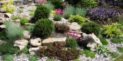 Spruce Up Your Property With These 4 Landscaping Trends, Harrisburg, North Carolina