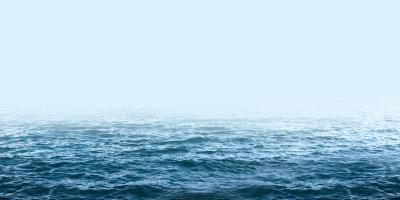 Formal vs. Informal Sea Scatterings, Brookhaven, New York