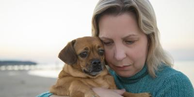 How to Cope With the Loss of a Pet, Waynesboro, Virginia