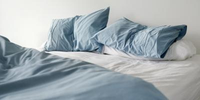 What to Do If You See Bed Bugs, Lincoln, Nebraska