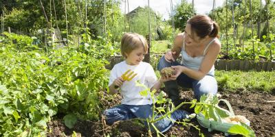 What to Consider When Planting a Vegetable Garden, Lincoln, Nebraska