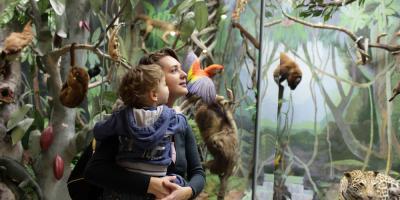 5 Ways to Continue Early Childhood Development This Summer, Honolulu, Hawaii