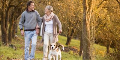 A Quick Guide to Glaucoma, Ellicott City, Maryland
