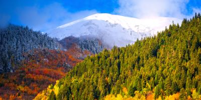 Realtor Gives Great Reasons to Live in Evergreen, CO, Evergreen, Colorado