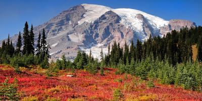 3 Reasons to Move to Puyallup, WA, Puyallup, Washington