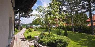3 Reasons You May Need Residential Tree Removal , Baldwin, Georgia