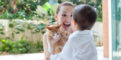 Why Should You Schedule Annual Pet Checkups?, Elk Grove, California