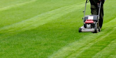 3 Spring Lawn Maintenance Tips , Batavia, New York