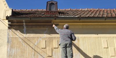 What Does a Commercial Painter Do to Protect Your Plant Life?, Katy, Texas