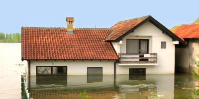 4 Steps for Dealing With Water Damage & Mold, Charlotte, North Carolina