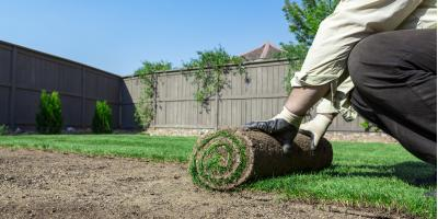 How to Choose the Right Grass for Your Climate, Hill, Arkansas