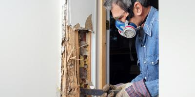 How Can Eastern Subterranean Termites Impact Your Home?, 2, Maryland