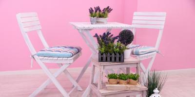 Top 3 Reasons to Embrace Indoor Gardening, Denver, Colorado