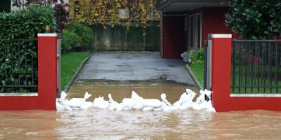 What You Need to Know About Water Damage Restoration, Worthington, Ohio