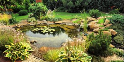 3 Benefits of Building a Pond as Your Home's Water Feature, Delhi, Ohio