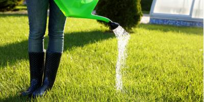 3 Tips for Watering Your Lawn This Fall, Pittsford, New York