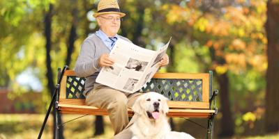 What Activities Are Excellent for Seniors?, New City, New York