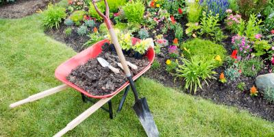 How to Keep Up With Your Property's Landscaping, Hawthorne, Florida
