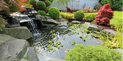 4 FAQ About Pond Colorants, East Bloomfield, New York