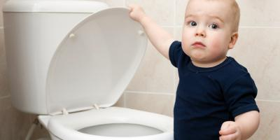 What Should You Never Flush Down the Toilet?, Levelland, Texas