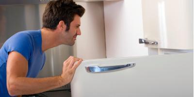 4 Common Reasons for Refrigerator Repairs, Portal, Georgia